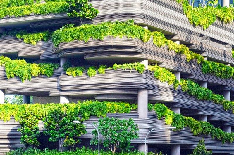Nhà kiến trúc xanh